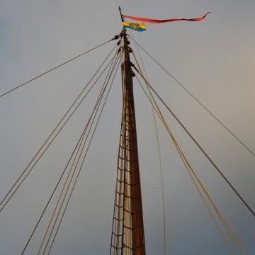 Torfmutte Delphin: Rhauderfeher Flagge